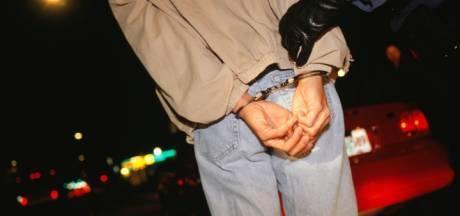 Agressieve man (33) opgepakt in appartementencomplex in Etten-Leur