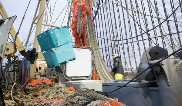 Minister Schouten overlegt met Fransen over toekomst pulsvissers
