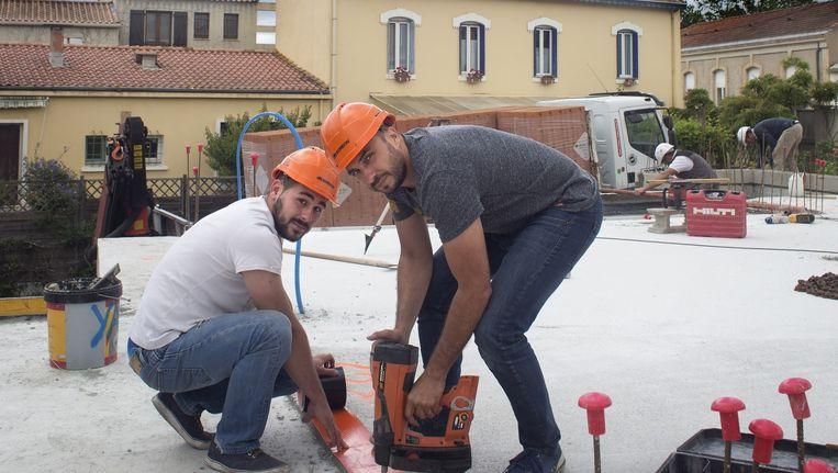 Insectenbestrijder David Inzerillo (rechts) aan het werk met een assistent. Hij zou graag iemand aannemen, zegt hij, maar als de nieuwe arbeidswet er niet komt, kan hij daar bij tegenspoed niet van af. Beeld Hans Heus