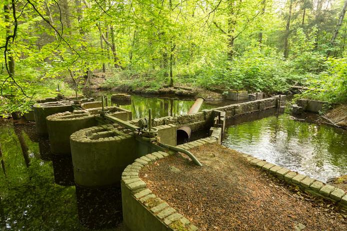 Het Waterloopbos, waar waterstaatkundige proeven werden gedaan.