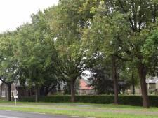 Vijftien huizen, theetuin en kas bij boerderij Abcovenseweg Goirle