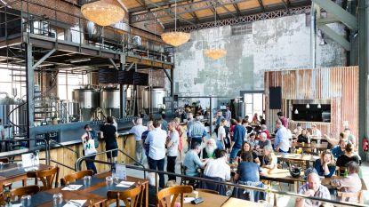 Creativiteit wordt beloond: DOK Brewing Company is een van de beste nieuwe brouwerijen ter wereld volgens RateBeer
