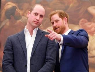 Buckingham Palace grijpt in: beschuldigingen tegen prins William in allerijl uit nieuwe docu geschrapt