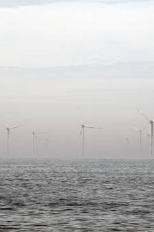 Vissen in windpark nu al kansloos