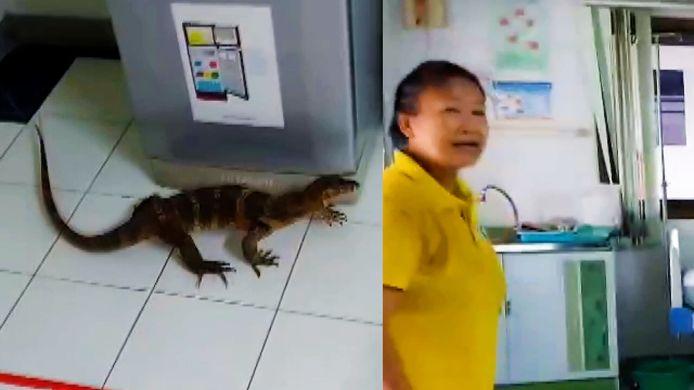 Voici le moment terrifiant où un varan s'est déchaîné dans un hôpital en Thaïlande.