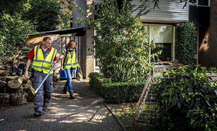 Inspecteurs van de Nederlandse Voedsel- en Warenautoriteit zijn in Veenendaal op zoek in tuinen van bewoners naar de Aziatische tijgermug.  Beeld ANP