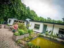 In deze Amerongse villa aan de bosrand ruik je de Heuvelrug