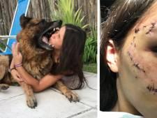 Son shooting photo avec un chien ne s'est pas terminé comme prévu