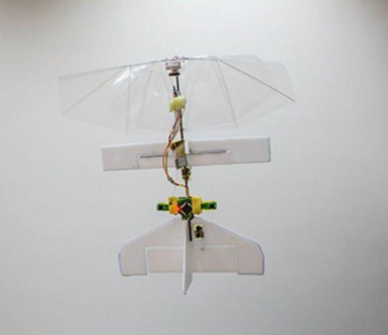 Robotlibelle DelFly Explorer. Beeld TU Delft