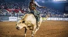 fotoreeks over De Tuff Hedeman Bull Riding Tour: 25 stierentemmers zetten hun beste beentje voor