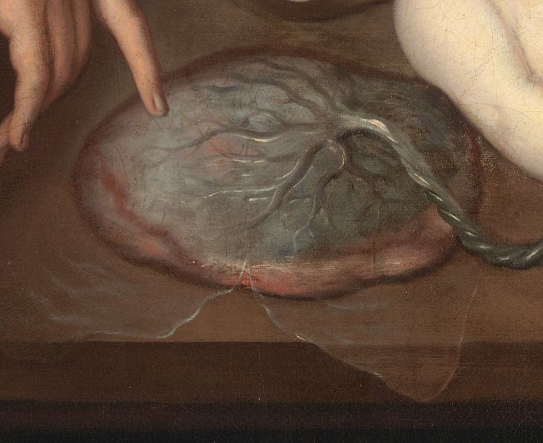 Detail uit 'Anatomische les van Dr. Frederick Ruysch'. Beeld Amsterdam Museum