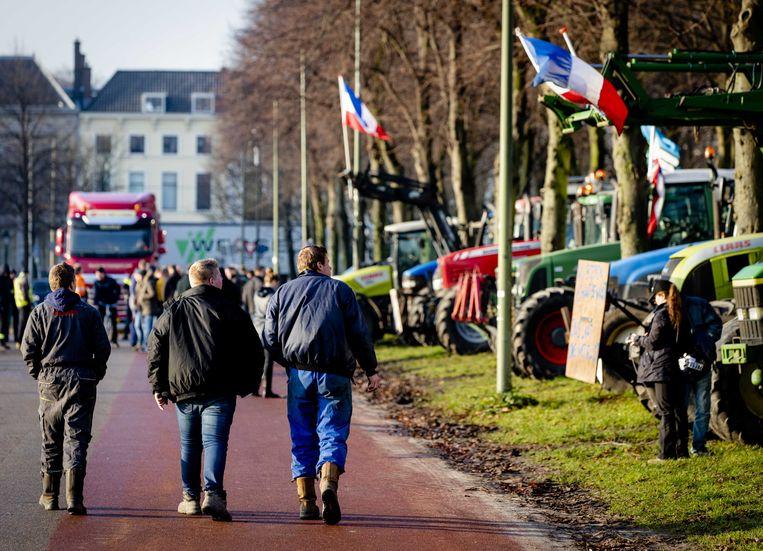 Boeren protesteren ook deze keer weer op het Malieveld in Den Haag tegen het stikstofbeleid.  Beeld ANP