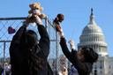 Een protestactie met teddybeertjes deze week in Washington, DC. 666 beren vertegenwoordigden de kinderen die nog steeds van hun ouders gescheiden zijn door het huidige migratiebeleid.