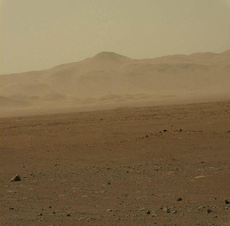 Een kleurenfoto van het Marsoppervlak bij de Gale krater. Beeld afp
