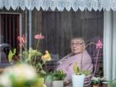 Nellie de Smit-Hoogesteger verloor een arm tijdens de bevrijding van Nisse