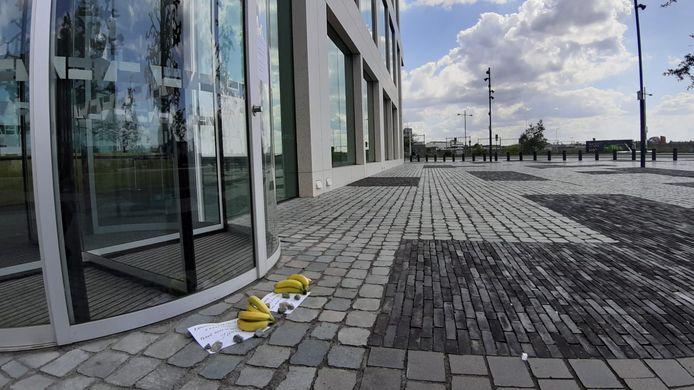 Bananen bij de rechtbank in Breda, gelegd door sympathisanten van Virus Waanzin.