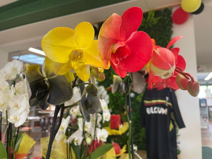 De orchideeën kregen de kleuren zwart, geel en rood.