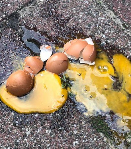 Politie zoekt eiergooiers Den Hoorn