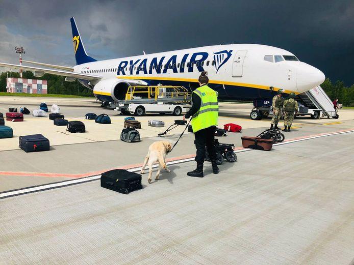 Een hond controleert op de luchthaven in Minsk de bagage van de onderweg gestopte vlucht van Ryanair.