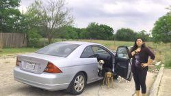Vrouw betrapt terwijl ze haar honden probeert te dumpen, maar ze doet gewoon verder