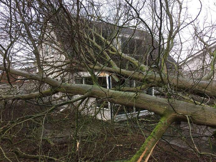 Woonhuis tussen Fien van Dusseldorphof en Vooskerbos in Moergestel.