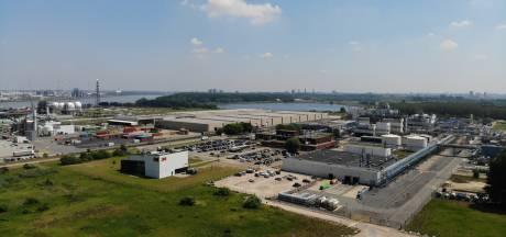 Hulst heeft geen zorgen over kankerverwekkende PFAS-vervuiling uit Antwerpen: 'Hier is alles schoon'