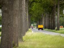 Gelderland hervat kap zieke bomen langs provinciale wegen