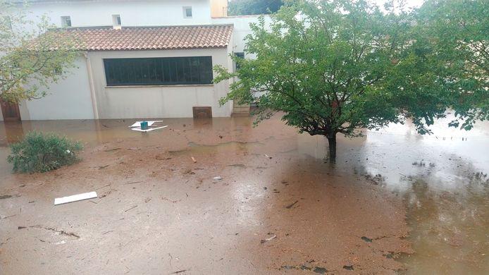 Un arbre se dresse parmi les eaux de crue à Aigues-Vives, dans le Gard, en France, le 14 septembre 2021.