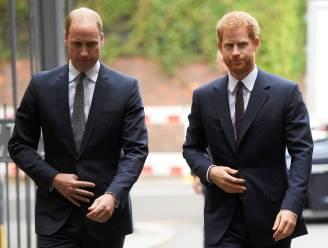 """Royalty-expert over prins William: """"Vete met Harry is het ergste dat hij meemaakt sinds de dood van Diana"""""""