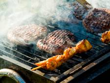 Zware barbecue op klaarlichte dag in Holten gestolen