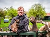 Niet alleen de geitjes staan te trappelen op de kinderboerderijen: 'Inkomsten halen we niet meer in'