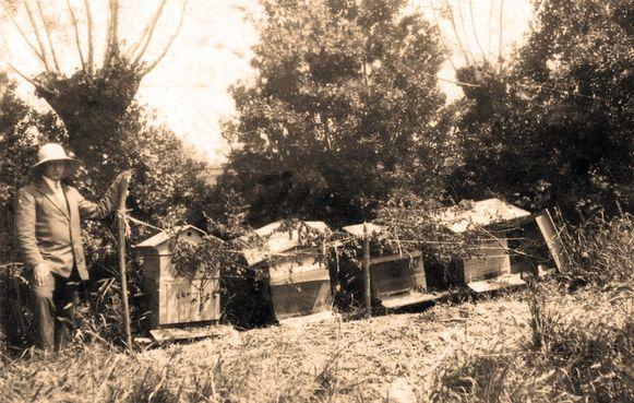 Alberic Florizoone met zijn eerste bijenkorven. Negentig jaar later is zijn honingbedrijf Meli nog steeds in handen van zijn familie.
