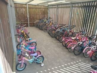 Gemeente zoekt nog steeds vrijwilligers voor 'Op Wielekes' fietsbibliotheek