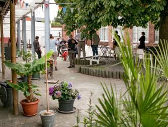Waas Kunstenoverleg WA KO organiseert kunstenaarsontmoeting