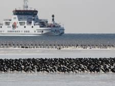 Weerstand tegen coronamaatregelen op boten naar waddeneilanden wordt groter. 'Het is voor onze mensen heel zwaar'