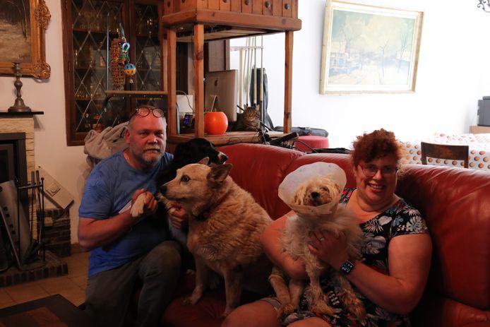 Alain De Backer en Cindy Kiekens met hun drie honden Dingo, Jefke en Lucky.