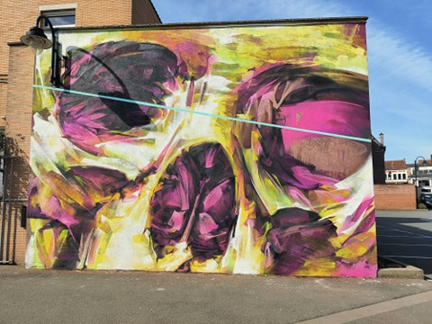 Het nieuwe graffitiwerk van Locatelli Steve in Ronse.