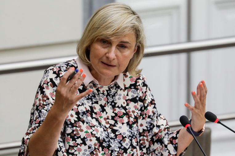 Minister van Onderwijs Hilde Crevits (CD&V) stuurt het M-decreet bij. Beeld BELGA