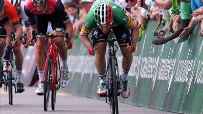 Tweede ritzege op rij voor Viviani in Ronde van Zwitserland