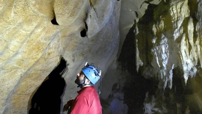 Nieuw ontdekte rotsschilderingen horen tot 'Champions League' van grotkunst