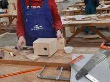 Vmbo-scholieren timmeren nestkastjes om overlast eikenprocessiesrups te voorkomen in Geldermalsen