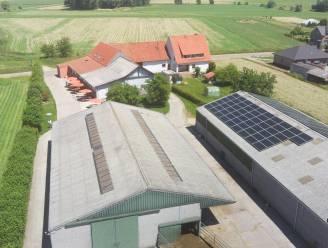 Zuivelhoeve Keymeulen legt 122 zonnepanelen op koeienstal