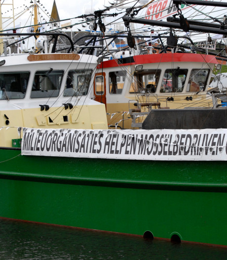 Zeeuwse mosselvissers beducht op nieuwe 'Groene Leugen'