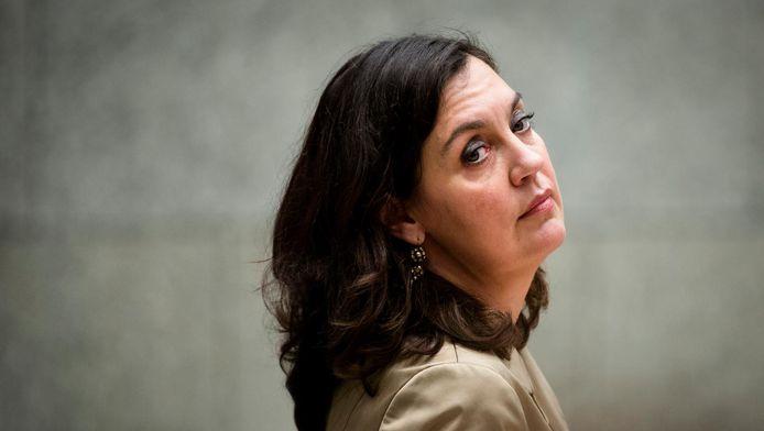 Pvda-kamerlid Marith Volp.