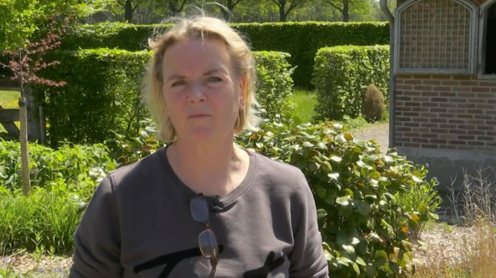 Erica van Chateau Meiland.