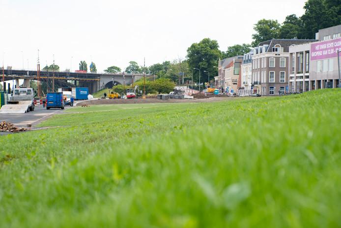 Fris groen op de Waalkade in Nijmegen.