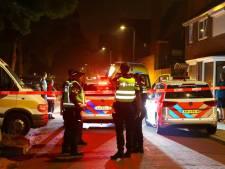 Derde verdachte (33) aangehouden na steekincident in Den Bosch