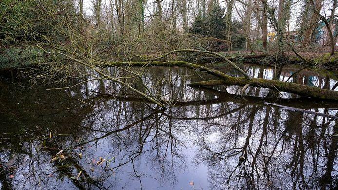 De Engelse parktuin is een pareltje