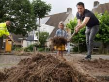 Tielenaren zorgen goed voor de bomen in hun wijk