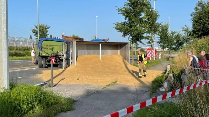 Aanhangwagen tractor kantelt: lading gerst belandt op gewestweg